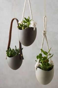 Riverstone wall planter by farrah sit hanging plants, potted plants, hanging gardens, outdoor Hanging Planters, Planter Pots, Hanging Gardens, Wall Planters, Ceramic Planters, Pot Plante, Garden Accessories, Cozy House, Indoor Plants
