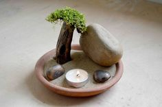 How To Make A Zen Desert Rock Garden