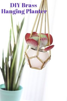 DIY Brass Hanging Planter — Apartment Therapy Tutorials | Apartment Therapy. why not use hard plastic straws spray painted gold?  Cheaper