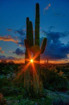 Taken by Russ Glindmeier for Arizona Highways magazine. Amazing Sunsets, Beautiful Sunset, Amazing Nature, Beautiful World, Beautiful Places, Landscape Photography, Nature Photography, Desert Sunset, Nature Photos