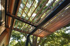 Modern Steel Trellis   Life of an Architect