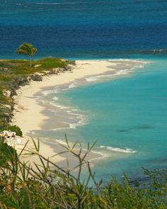Anguila: Shoal Bay East Beach..and yes, it is even better in person!