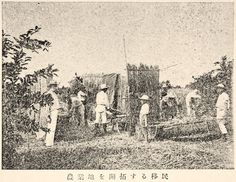 """Immigrants Reclaiming Farmland, Brazil"", Juvenile Encyclopedia, 1932 Vol. 14 World Geography 兒童百科大辭典 第十四巻 地理篇(三) 玉川學園出版部 昭和七年"