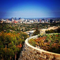 #westwood and #centurycity #beautifulday #100happydays #gettycenter #view #gardens