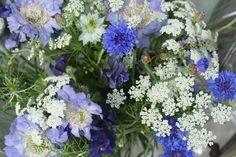 Delicate cornflower bouquet