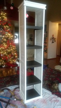 Repurposed bifold doors made into a shelving unit by my handy husband.