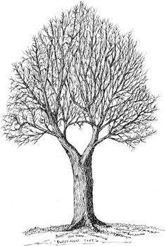 Sweetheart Tree Drawing  - Sweetheart Tree Fine Art Print