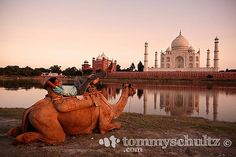 Indian Huckleberry Finn beside the river at the Taj Mahal in Agra