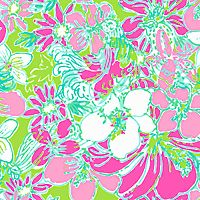 68 Best Lilly Pulitzer Bird Prints Images Lilly Pulitzer