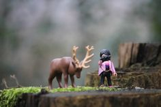 Fun with Playmobil Lego Photography, Still Life Photography, Wildlife Photography, Bambi, Playmobil Toys, Toy Display, Shoulder Bags For School, Mini Photo, Life Pictures
