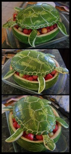 Watermelon Turtle Art - www.funny-pictures-blog.com