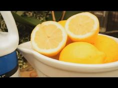 How to Use Lemon Juice on Orchids : Orchid Care  More