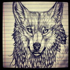 Wolf sketch by ricenator