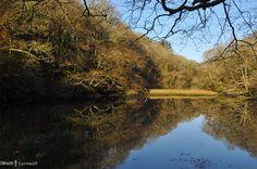 Reflections at Ethy Rock, Lerryn, Cornwall