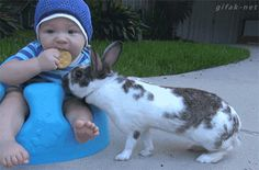 BUNNY THIEF ! (ha ha) baby's expression is priceless!