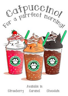Kawaii Starbucks Catpuccino Art in Japan ~. I Love Cats, Cute Cats, Funny Cats, Cute Animal Drawings, Kawaii Drawings, Drawings Of Cats, Cute Cat Drawing, Adorable Drawings, Cute Food Drawings