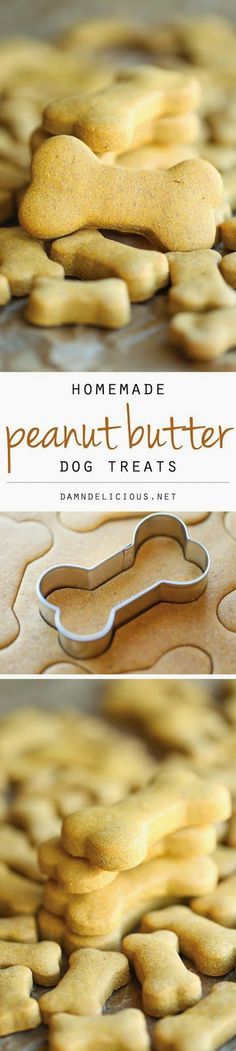 "Homemade Peanut Butter Dog Treats - The easiest homemade dog treats ever - simply mix, roll and cut. Easy peasy, and so much healthier than store-bought! Damn Delicious Says ""dog treats"" but they're for everyone Puppy Treats, Diy Dog Treats, Dog Treat Recipes, Dog Food Recipes, Cooking Recipes, Peanut Recipes, Food Tips, Easy Recipes, Peanut Butter Dog Treats"