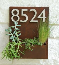 Hey, I found this really awesome Etsy listing at https://www.etsy.com/listing/195540493/12-x-16-mid-century-succulent-wall