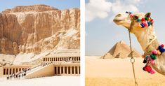 Travel expert George Morgan-Grenville of Red Savannah shares the must-know tips when traveling to Egypt. Travel Expert, Budget Travel, Egypt Travel, Travel And Leisure, Time Travel, Savannah Chat, Traveling, Vacation, Tips
