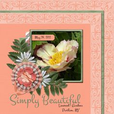 Simply Beautiful  Over the Fence Designs OH REALLY http://www.godigitalscrapbooking.com/shop/index.php?main_page=advanced_search_result&keyword=Oh+Really&categories_id=&inc_subcat=1&manufacturers_id=172&pfrom=&pto=&dfrom=&dto=&x=21&y=7  Template - Sharon D Stolp