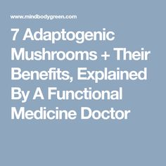 7 Adaptogenic Mushrooms + Their Benefits, Explained By A Functional Medicine Doctor
