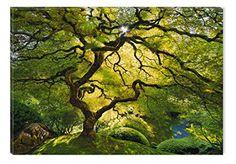 Startonight Canvas Wall Art Beautiful Green Maple, Nature... https://www.amazon.com/dp/B0151QYLVQ/ref=cm_sw_r_pi_dp_x_Zsb3xbGRBCAJK