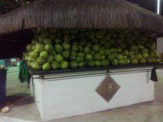 Salvador - Quem quer um pouco de coco?