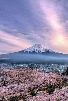 Another Japan Photo is part of Mount fuji - 505 points Monte Fuji Japon, Landscape Photography, Nature Photography, Photography Photos, Travel Photography, Cherry Blossom Japan, Cherry Blossoms, Fuji Mountain, Mont Fuji