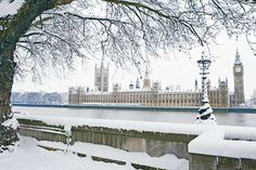 Big Ben and the Palace of Westminster, London. - Photo: David Noble/Alamy