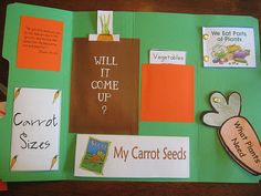 Lap Top Books- Folder books with activities--gr8 Idea for themes of the week!!