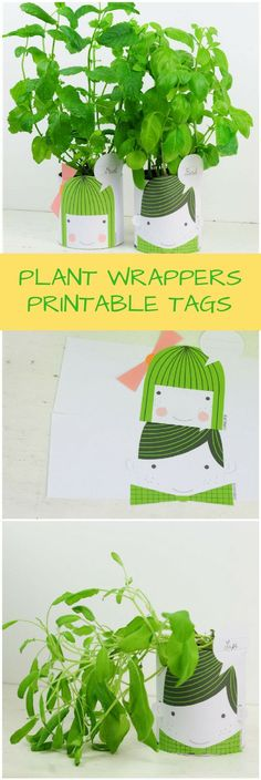 PLANT AND VEGETABLE PRINTABLE WRAPPER TAGS