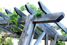 How to build a beautiful DIY pergola ( beginner friendly DIY grape arbor )! Free building plan with step by step drawings and lots of detailed photos. Build it easily for your garden without buying pergola kits! Diy Pergola, Diy Arbour, Pergola Carport, Building A Pergola, Small Pergola, Pergola Canopy, Pergola Attached To House, Pergola Swing, Metal Pergola