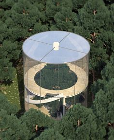 Beautiful Glass Tree house designed by A.Masow will be constructed around a large tree in the mountains of Almaty, Kazakhstan.   Transparent house in t...