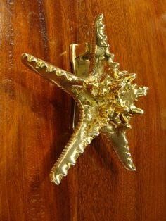 """Solid cast brass starfish door knocker cast from a real knob sea star starfish! Mounts with two bolts through the door (two 1 7/8"""" bolts included). Height 7""""; width 7.25""""."""