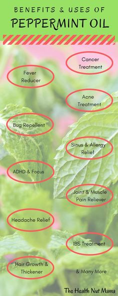Find out many of the amazing Benefits & Uses of Peppermint Oil. Natural Remedies for healing acne, A Allergy Remedies, Eczema Remedies, Holistic Remedies, Health Remedies, Peppermint Oil Benefits, Peppermint Oil Uses, Peppermint Tea, Peppermint Oil For Headaches, Peppermint Patties