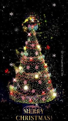 Christmas Tree Gif, Merry Christmas Message, Merry Christmas Pictures, Christmas Scenery, Merry Christmas Quotes, Christmas Mood, Merry Xmas, Christmas Humor, Christmas Decorations