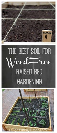 Choosing the soil for your raised bed, square foot garden.  The dirt on how to add soil to your beds to have a no or low weed garden.  Manure? Peat? Triple Mix? Soil? Which one is best?