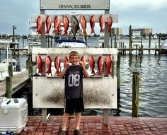 A Little Bit of Everything - Destin Vacation Boat Rentals Destin Fishing, Fishing Report, Boat Rental, Fun Activities, All Star, Florida, Vacation, Vacations, Converse