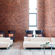 Cambridge Brick stone wall cladding is easy to install on any Interior Only project. See installation videos, order samples or calculate your supplies usage and buy online. Outdoor Furniture Sets, Furniture, Interior, Stone Wall Cladding, Brick And Stone, Home Decor, Brick, Interior Design, Wall Design