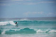 Adult BVI Surf Camp - Reviews