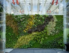 funky vertical garden at ca academy of science, sf.