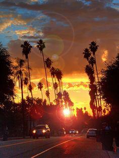Tarde californiana