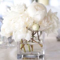 instead of a pop of color, add a pop of white with white peonies. mix full bloom and closed peonies for variance in size and texture. My Flower, Fresh Flowers, White Flowers, Beautiful Flowers, Blooming Flowers, Flowers Uk, Flower Ideas, Simply Beautiful, Deco Floral