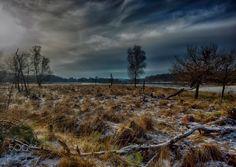 Leersumse Veld #05, Leersum, The Netherlands - Het Leersumse Veld is een natuurgebied in het zuidoosten van de Nederlandse provincie Utrecht.