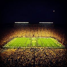 The Big House, a favorite of our students, and 115,109 Wolverine fans.