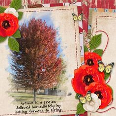 Theme - Trees | Scrapbook Campus Floral Wreath, Layout, Scrapbook, Wreaths, Seasons, Spring, Appreciation, Projects, Trees