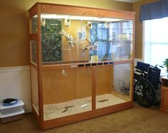 Google Image Result for http://www.aviaryservices.com/images/bird-cage-for-nursing-home.jpg