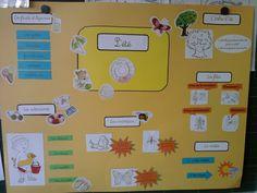 Cartes heuristiques - LES SAISONS - L'école de Crevette