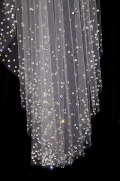Cathedral Length Wedding Veil with Crystal Edge and by pureblooms, $255.00