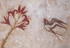 ( - p.mc.n. )16. Jahrhundert v.Chr - Swallow / Minoan wallpainting